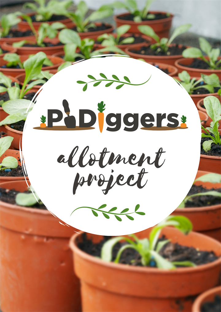 phdiggers allotment project